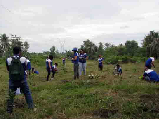 Badminton players plant 300 trees