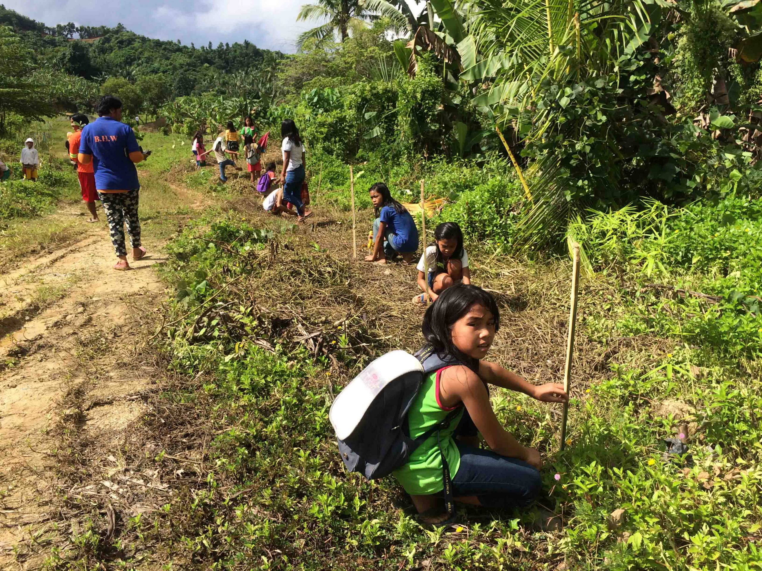 Students, their families plant 3.5T trees in Pinamungahan uplands
