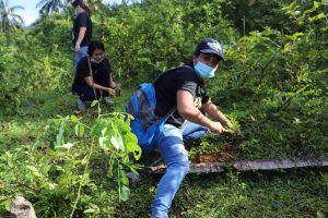 Solid Earth plants 10k new trees